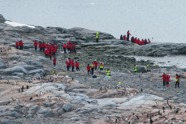 Tourism in Antarctica: A Growing Industry